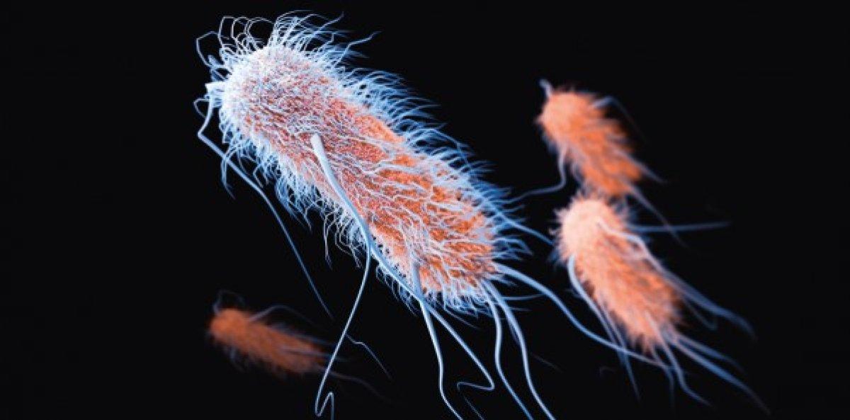 Uzayda 3 yıl yaşabilen süper bakteriler bulundu #1