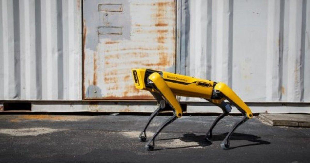 Boston Dynamics in robot köpeği Spot Avrupa da satışa çıktı #4