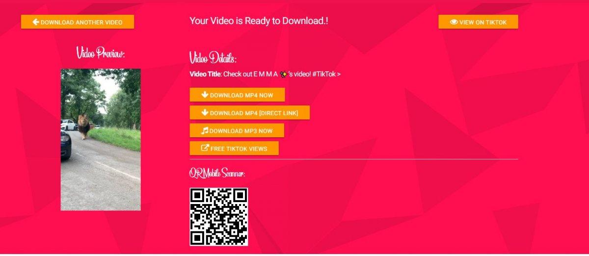 tiktok video indirme